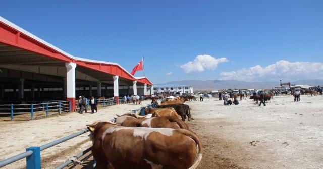Erzurumdan Batıya Kurban Sevkiyatı Başladı