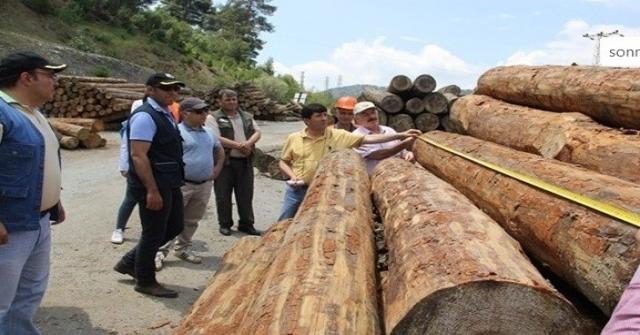 Adana Orman Bölge Müdürlüğü Üretim Ve Satış Hedeflerini Aştı