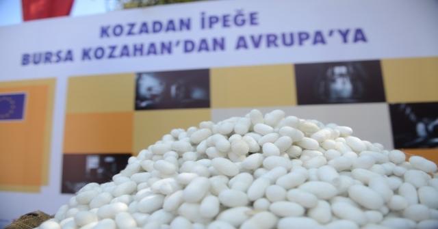 Bursa İpeğinin Avrupa Yolculuğu Kozahanda Teşhir Ediliyor