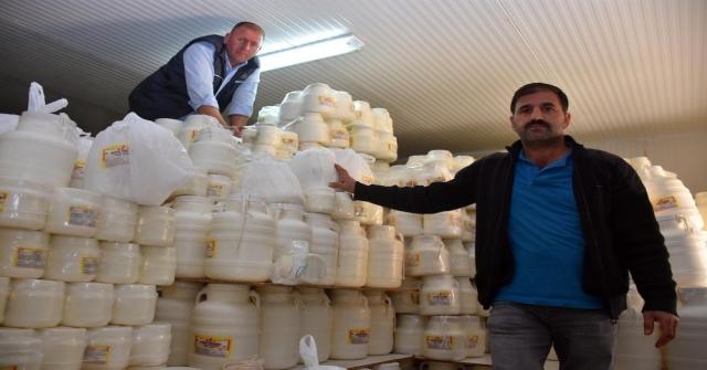 Muştan Dünyaya Peynir İhracatı