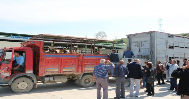 Kocaelide 232 Genç Çiftçiye 6 Milyon 960 Bin Tl Hibe Desteği Verildi