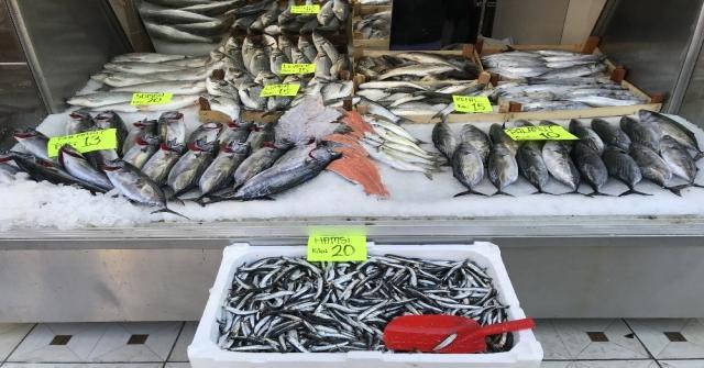 Karadeniz Hamsisi Tezgahlarda 20 Tlyi Gördü