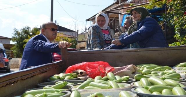 İznikte Üretilen Kabaklar Yurt Dışına İhraç Ediliyor
