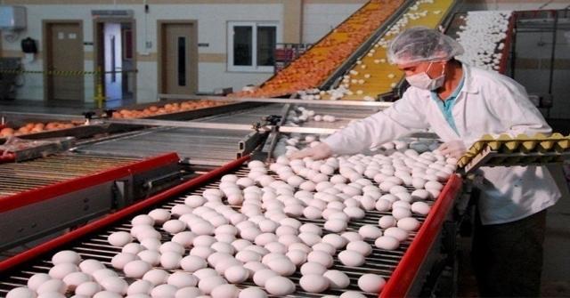 Yumurta Üreticileri Merkez Birliğinden Zam Açıklaması