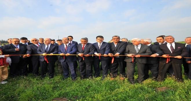 Osmaniye Sumbas'ta modern mera açıldı