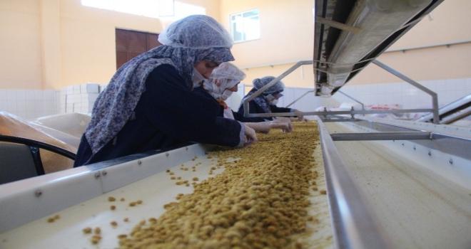 Dede Mesleğini Büyüterek Fabrika Kurdu
