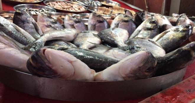 Dolar Balıkçıları Da Vurdu