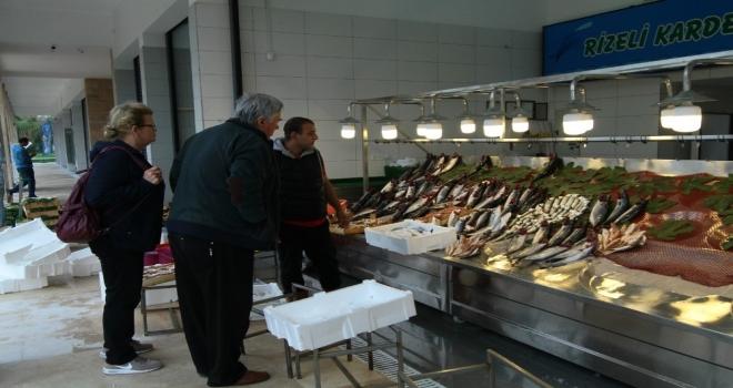 İzmitli Balıkçılar Yeni Yerlerine Taşındı